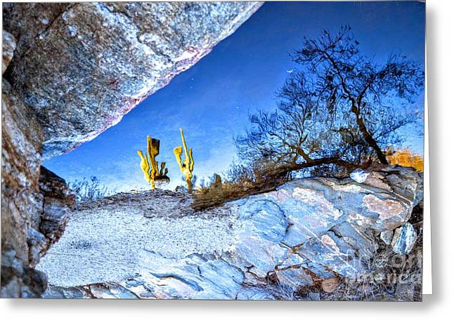 Sabino Canyon Reflection In Pool Greeting Card by Rincon Road Photography By Ben Petersen