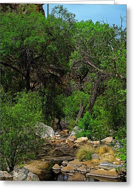 Greeting Card featuring the photograph Sabino Canyon V49 by Mark Myhaver