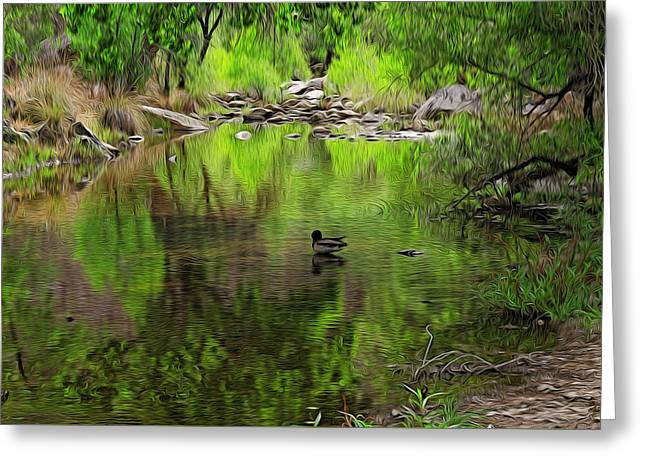 Greeting Card featuring the photograph Sabino Reflection Op53 by Mark Myhaver