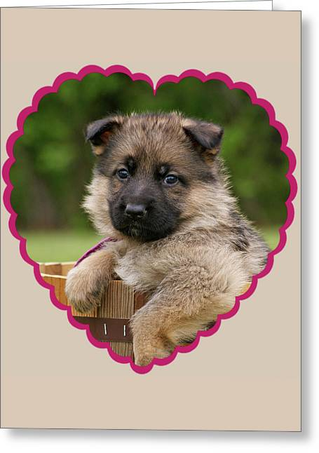 Greeting Card featuring the photograph Sable Puppy In Heart by Sandy Keeton