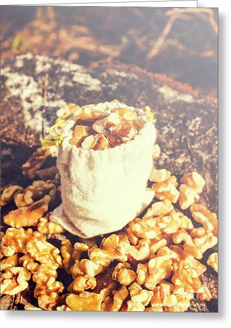 Sack Of Country Walnuts Greeting Card by Jorgo Photography - Wall Art Gallery