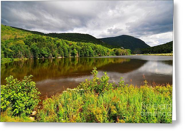Saco Lake Greeting Card by Catherine Reusch Daley