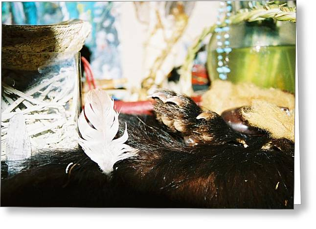 Greeting Card featuring the photograph Sacred Bear Claw Medicine by Kicking Bear  Productions