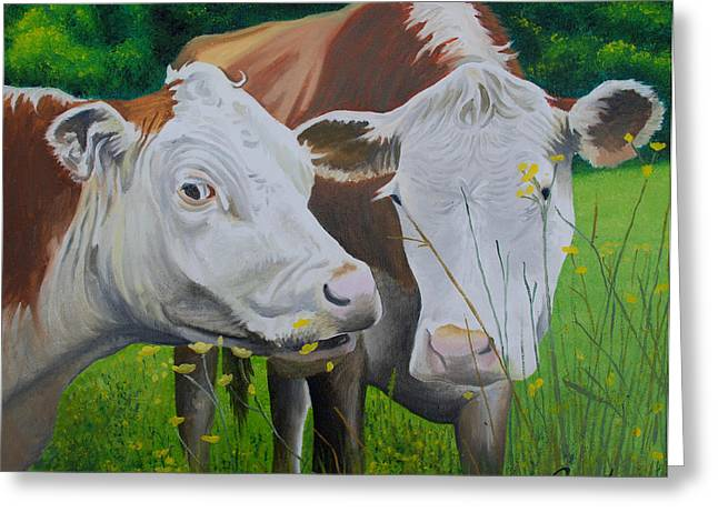 Sacred Cows Greeting Card