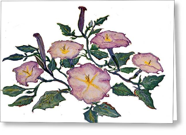 Sacred Datura Greeting Card