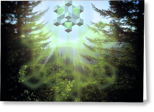 Sacred Forest Event Greeting Card