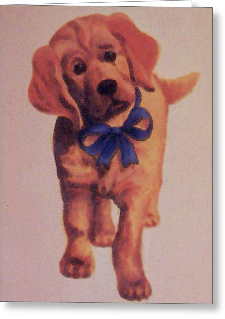 Sad Puppy Greeting Card