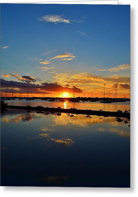 Safe Harbor Greeting Card by Bo Chambers