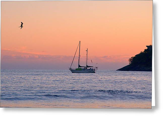 Safe Harbor Greeting Card by Jim Walls PhotoArtist