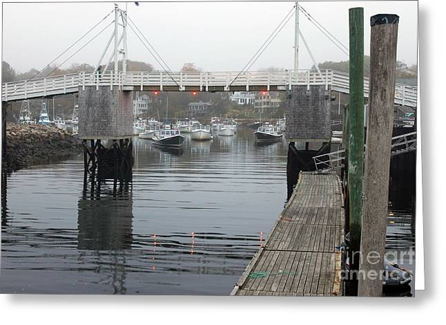Safe Harbor Greeting Card by Steve Gass