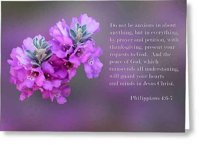Sage Blossoms Philippians 4 Vs 6-7 Greeting Card by Linda Phelps