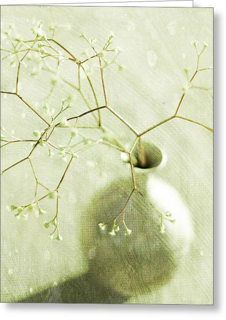Vase Of Flowers Greeting Cards - Sage  Greeting Card by Linde Townsend