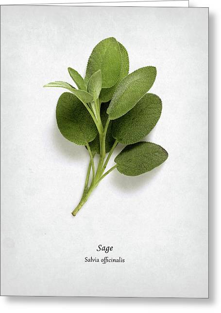 Sage Greeting Card by Mark Rogan