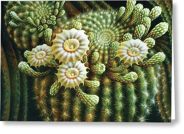 Saguaro Cactus Blossoms Greeting Card