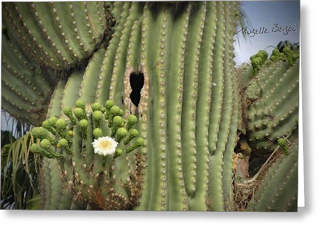 Saguaro In Bloom Greeting Card