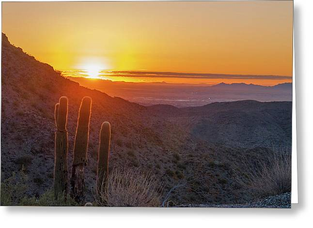 Saguaro Sunrise Greeting Card