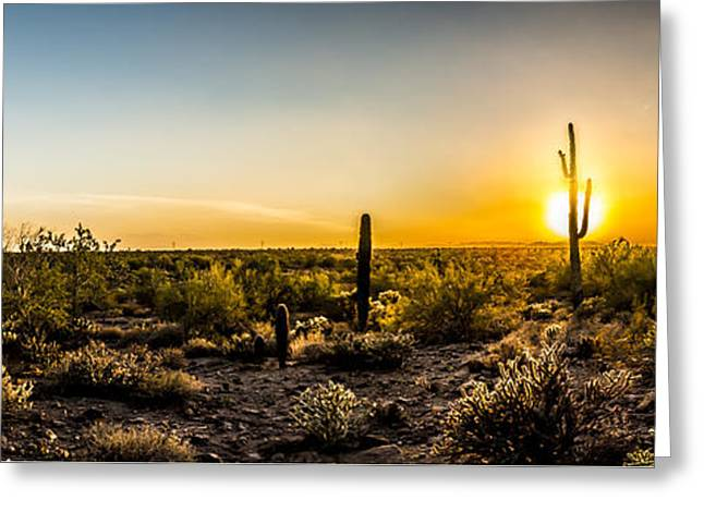 Saguaro Sunset Panoramic Greeting Card by Chuck Brown