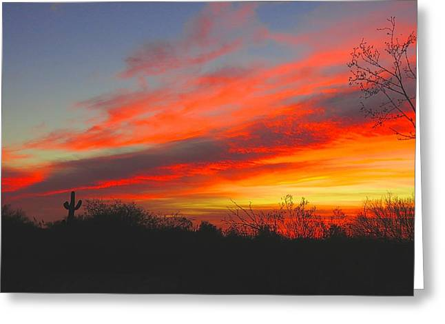 Saguaro Winter Sunrise Greeting Card