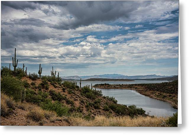 Greeting Card featuring the photograph Saguaro With A Lake View  by Saija Lehtonen