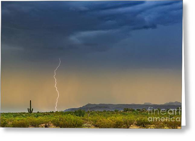 Saguaro With Lightning Greeting Card