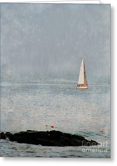Sail Away Greeting Card by Colleen Kammerer