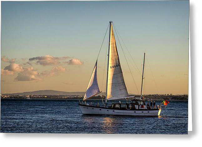 Sail Away From Lisbon Greeting Card