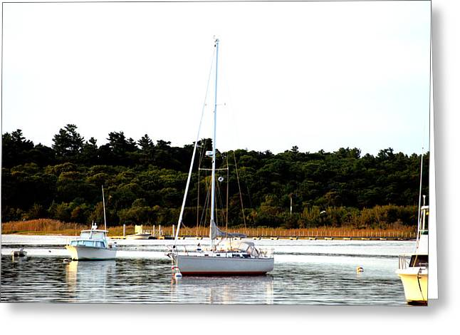 Sail Boat At Anchor  Greeting Card