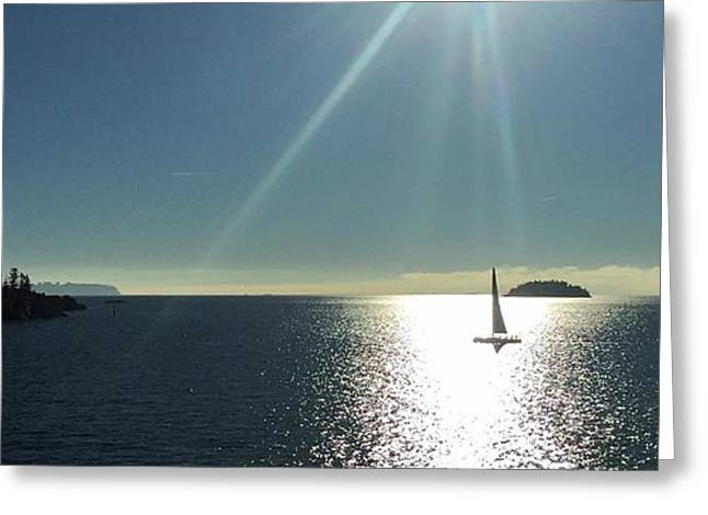 Sail Free Greeting Card by Victor K
