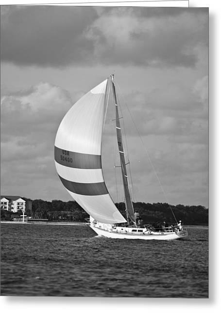 Sail Power Greeting Card by Dustin K Ryan