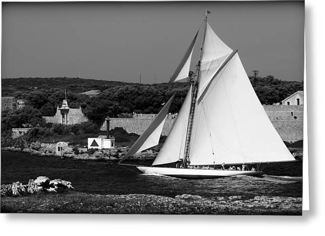 sailboat - a one mast classical vessel sailing in one of the most beautiful harbours Port Mahon Greeting Card by Pedro Cardona