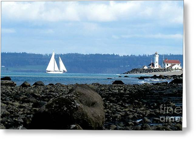 Sailboat And Lighthouse Greeting Card