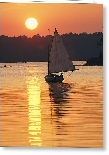River Scenes Greeting Cards - Sailboat And Sunset, South River Greeting Card by Skip Brown