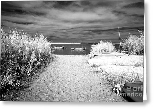 Sailboat Entry Ir Greeting Card