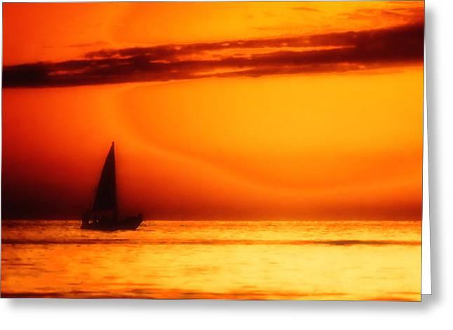 Sailboat In Orange Greeting Card by Lyle  Huisken