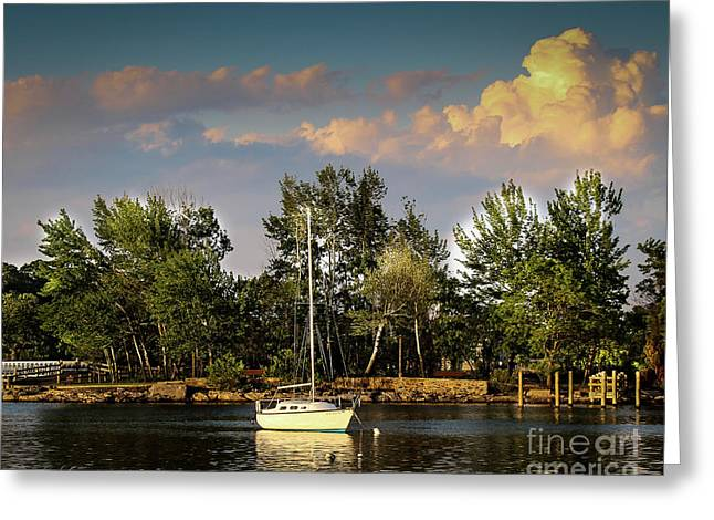 Sailboat In The Bay Greeting Card