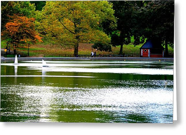 Sailboat Pond At Central Park Greeting Card by Christopher Kirby