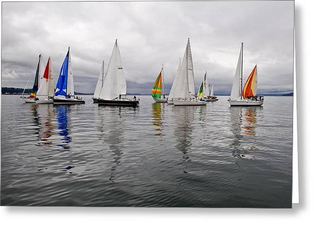 Sailboat Race Seattle Greeting Card by Tom Dowd