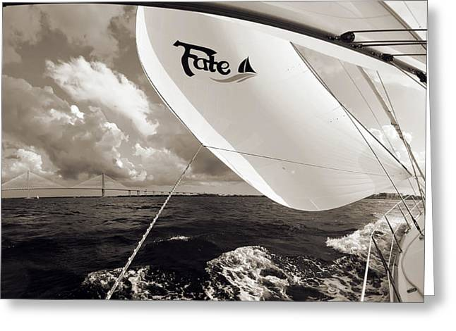 Sailboat Spinnaker Fate Beneteau 49 Charleston Sc  Greeting Card by Dustin K Ryan
