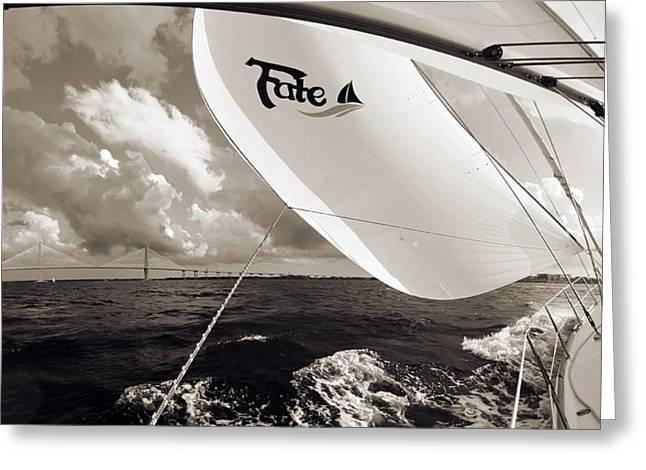 Charleston Greeting Cards - Sailboat Spinnaker Fate Beneteau 49 Charleston SC  Greeting Card by Dustin K Ryan