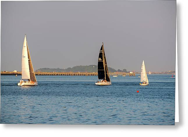 Sailboats On The Boston Harbor Boston Harbor Islands Greeting Card by Toby McGuire