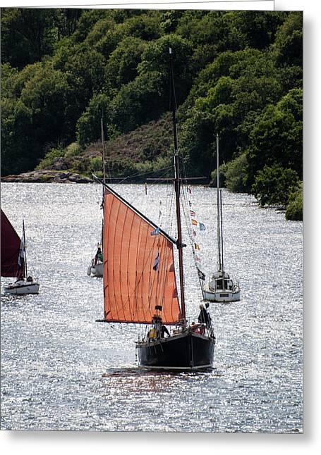 Sailing 46 Greeting Card