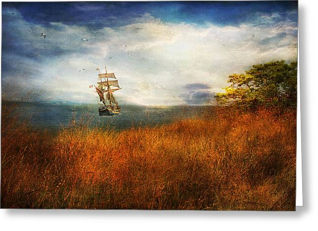 Greeting Card featuring the photograph Sailing America by John Rivera