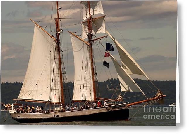 Sailing Away Greeting Card by Robert Torkomian
