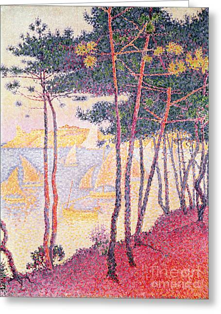 Pointillist Greeting Cards - Sailing Boats and Pine Trees Greeting Card by Paul Signac