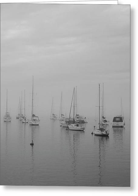 Sailing Bw Greeting Card by Silvia Bruno