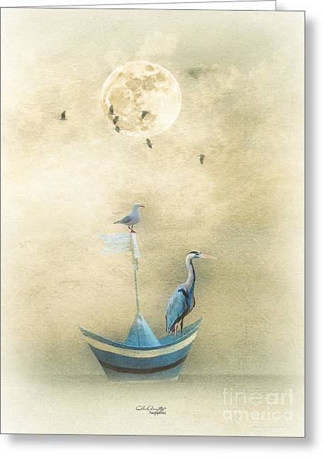 Sailing By The Moon Greeting Card