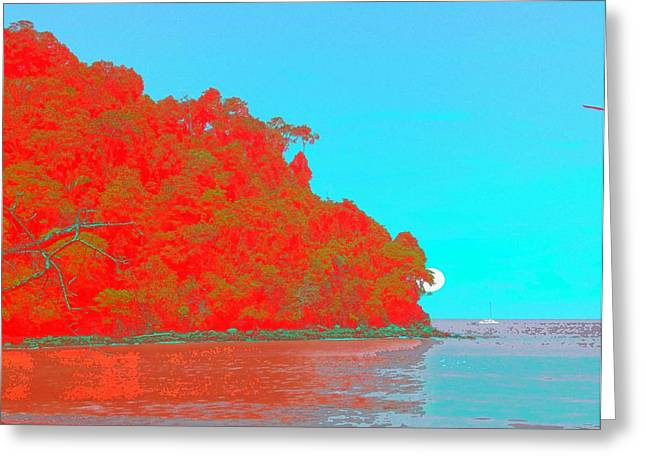 Sailing By The Sea Greeting Card by Philip Okoro