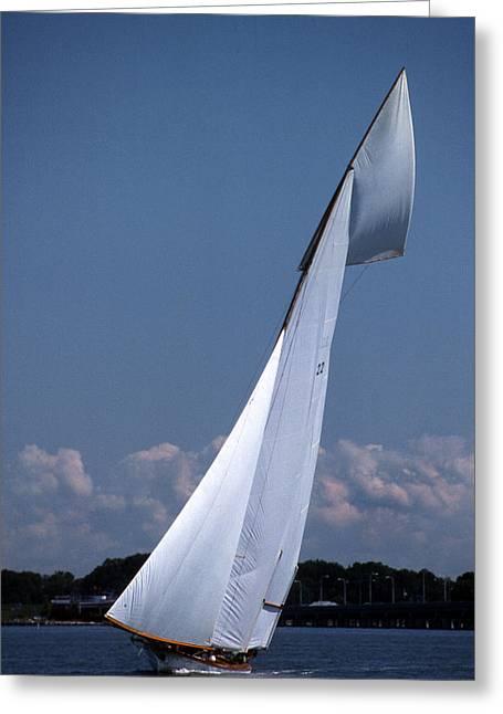 Sailing Elegance Greeting Card by Skip Willits