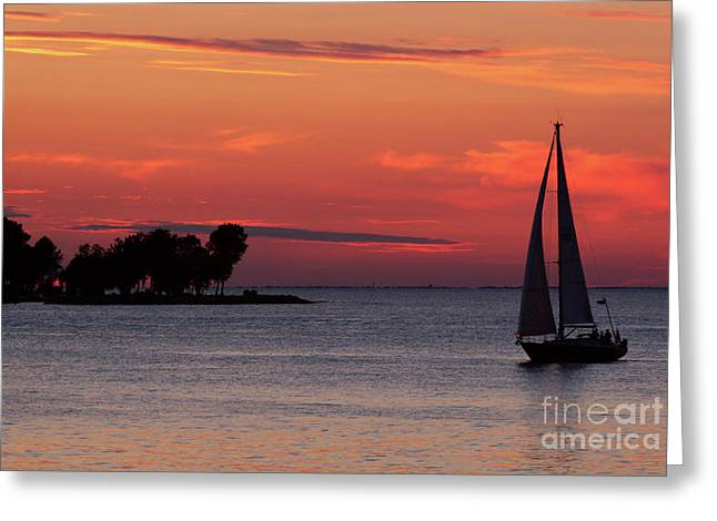 Sailing Home Greeting Card by Joel Witmeyer