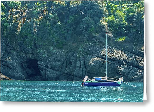 Sailing In Portofino Greeting Card by Al Hurley